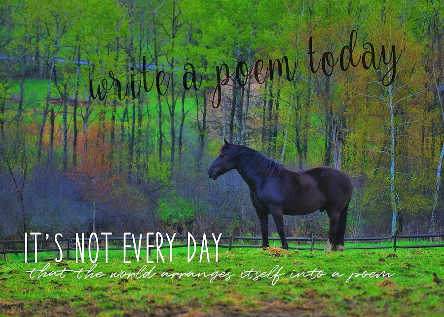 Horse Photograph - Spring Pasture Quote by JAMART Photography