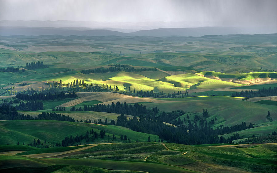 Palouse Photograph - Spring Rain Falls On The Palouse by Jerry McCollum