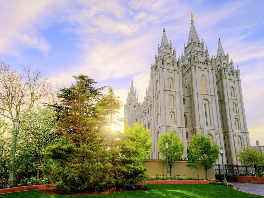 Salt Lake Photograph - Spring Rest by Chad Dutson