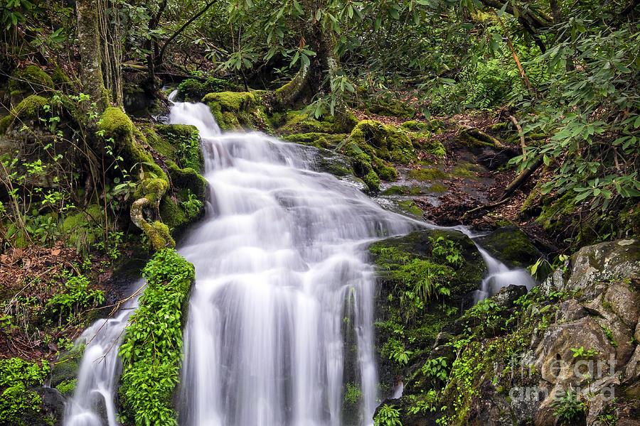 Waterfall Photograph - Spring Season Cascade by Madonna Martin