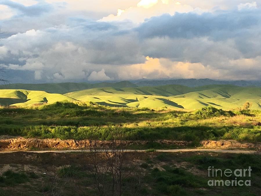 Green Photograph - Spring Showers by Iva Fendrick