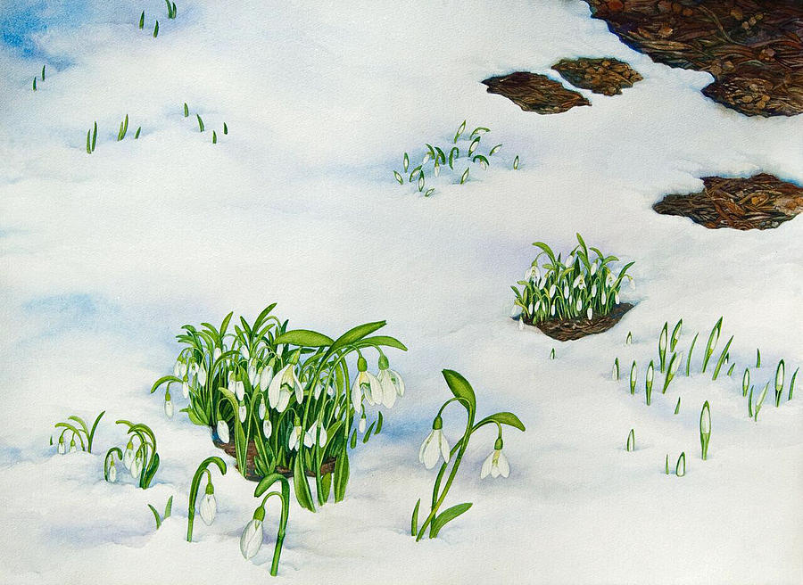 Landscape Painting - Spring Snowdrops by Helen Klebesadel