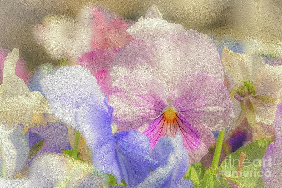 Spring Sweetness Photograph