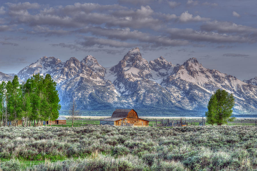 Spring Teton Barn  by David Armstrong
