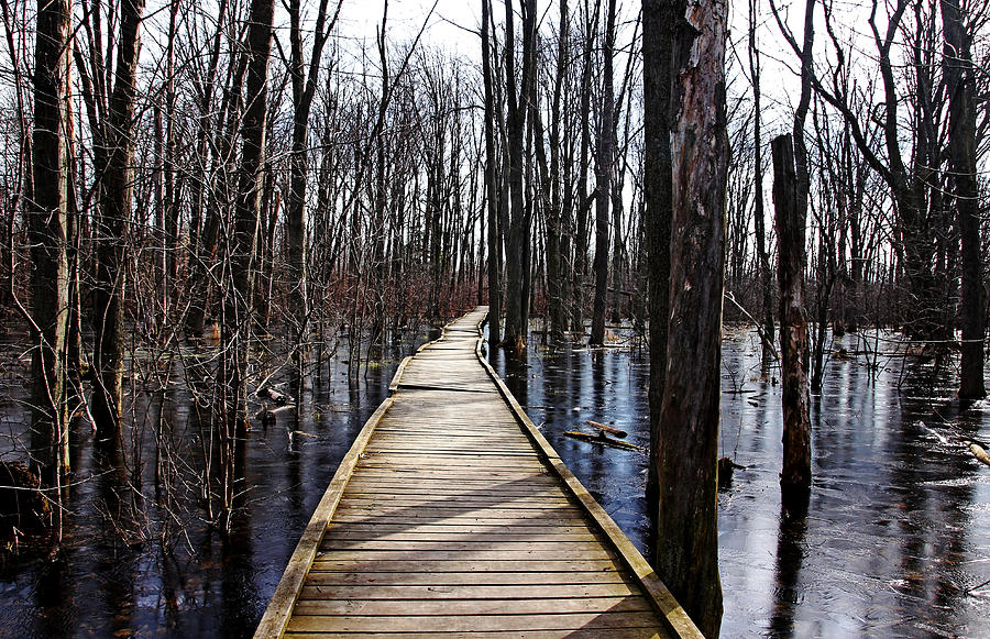 Spring Thaw - Outdoor Photographer