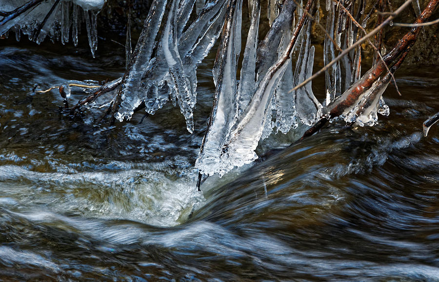 Spring Thaw Photograph by See My Photos