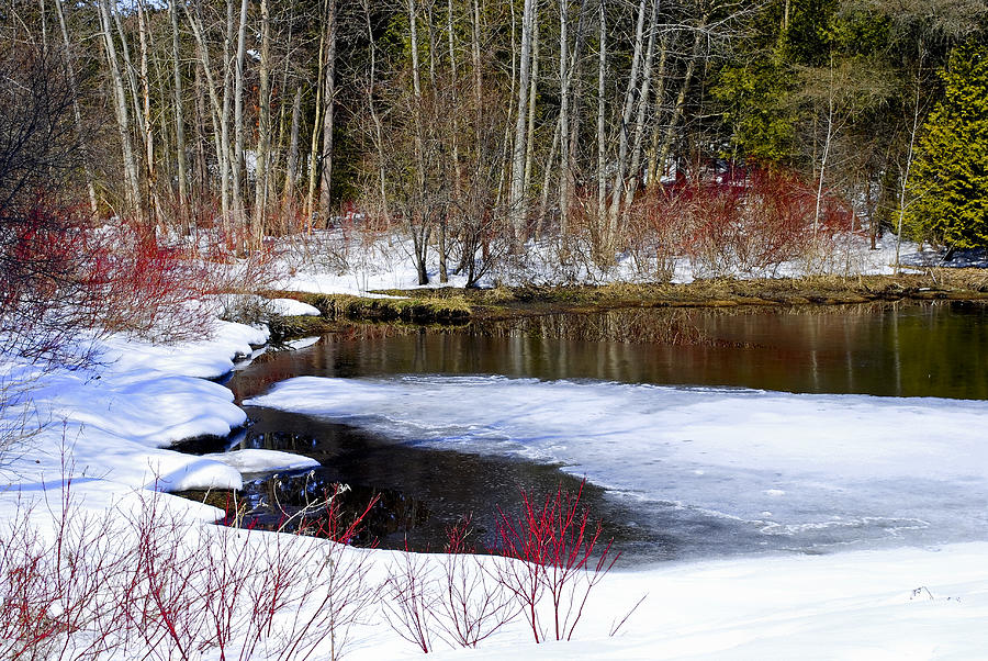 Spring Thaw Photograph by Ed Ostrander
