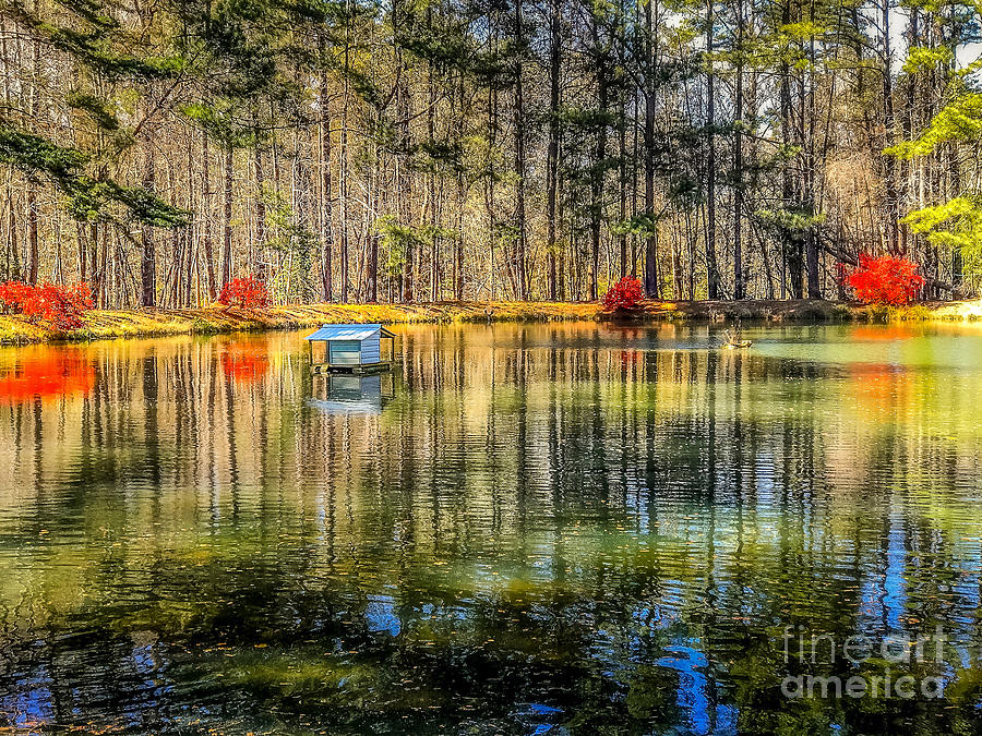 Spring Water Reflection My Secret Place by Peggy Franz