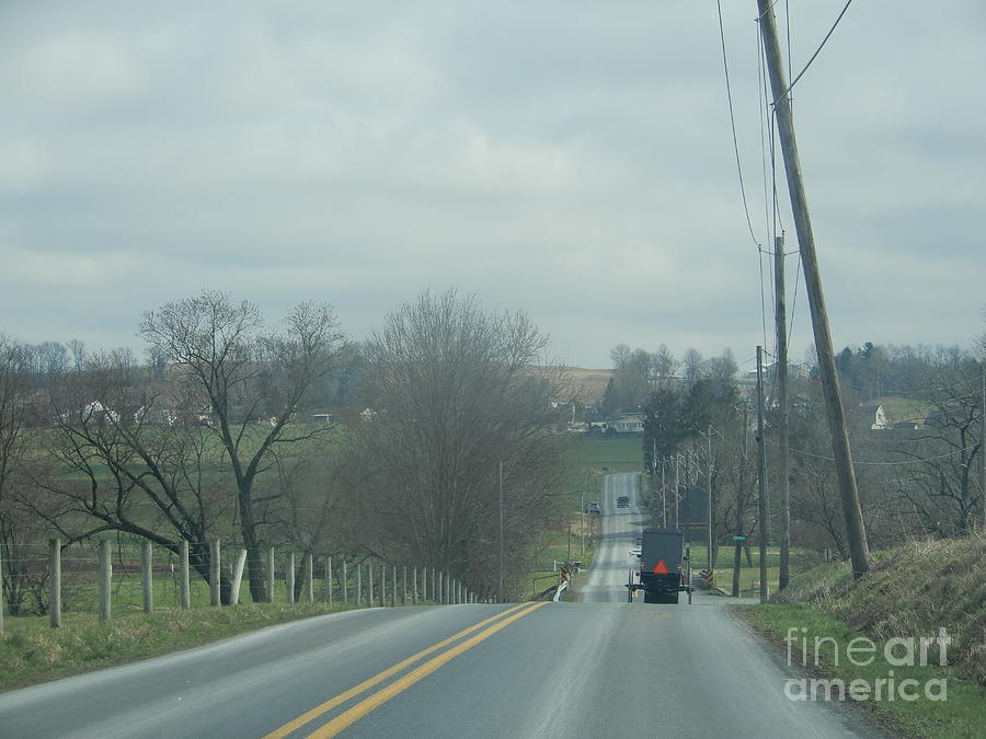 Amish Photograph - Springs Promise Is Showing by Christine Clark