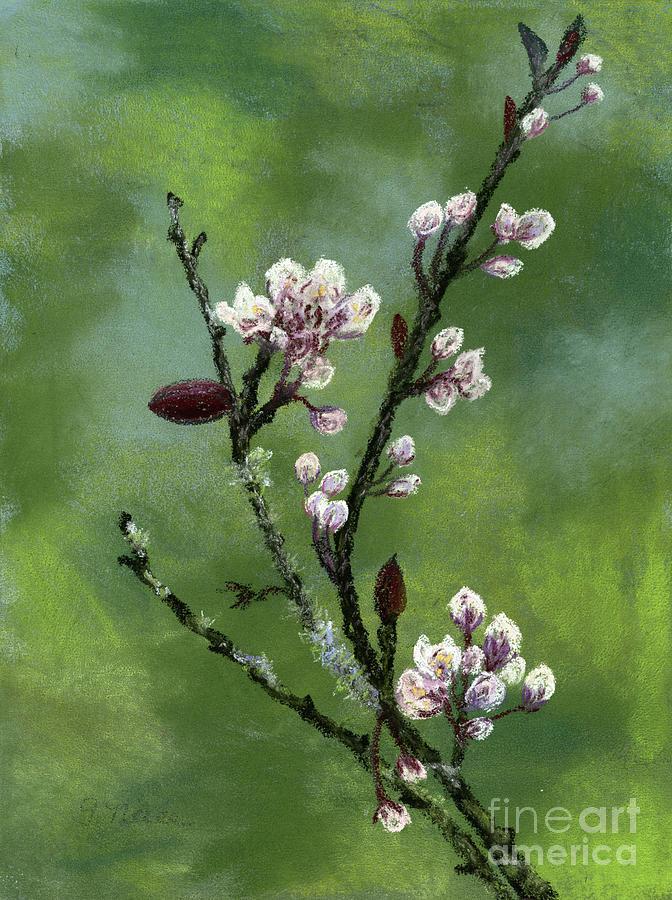 Springtime Buds by Ginny Neece