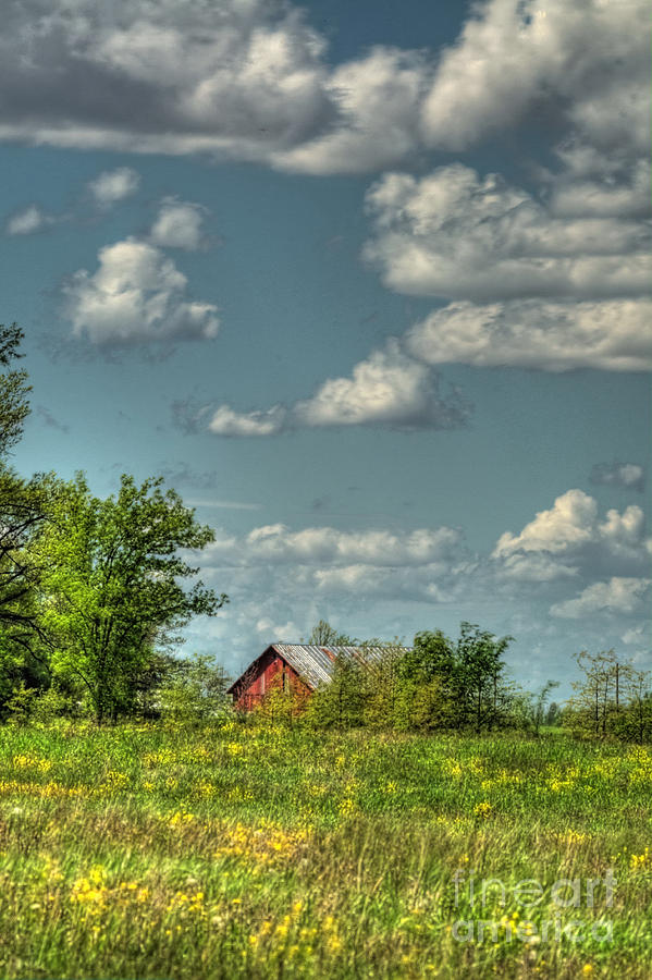 Barn Photograph - Springtime  by Pamela Baker