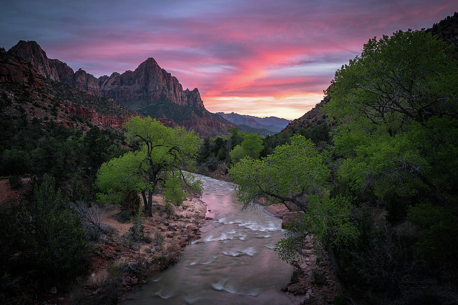 Springtime Sunset at Zion National Park by James Udall