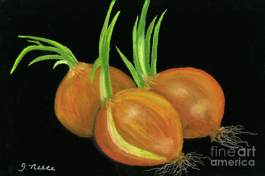 Sprouting Onions by Ginny Neece
