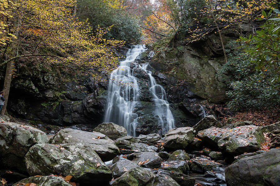 Spruce Flats Falls in Early November by Chris Berrier