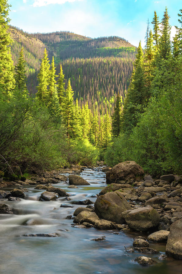 Squaw Creek, Colorado #2 by Adam Reinhart