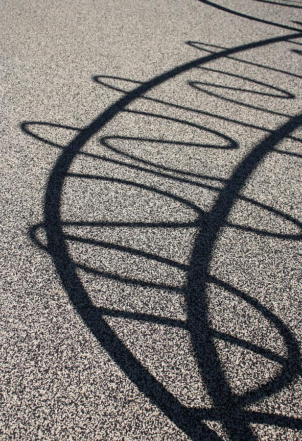Shadows Photograph - Squiggle Shadow by Mandy Shupp
