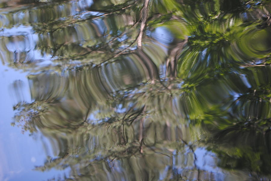 Water Photograph - Squiggles by Mona McClave Dunson