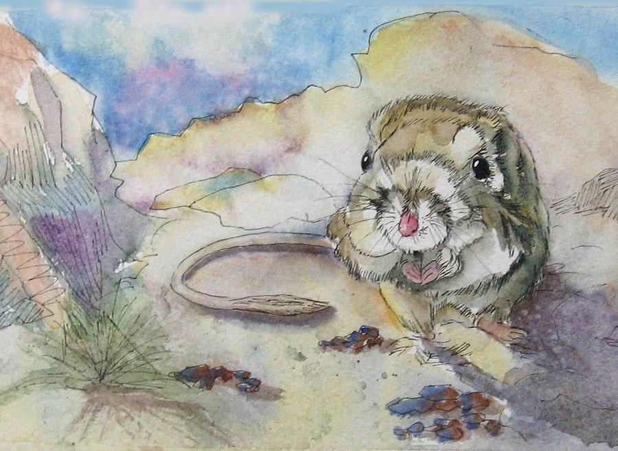 Kangaroo Rat Painting - Squiggy by Gina Hall