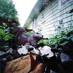 Garden Photograph - Squirrel And Statue by Sheila Bocchine