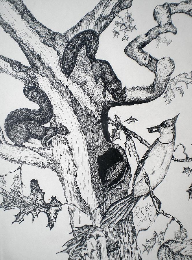 Nature Drawing - Squirrels And Bird by Tammera Malicki-Wong