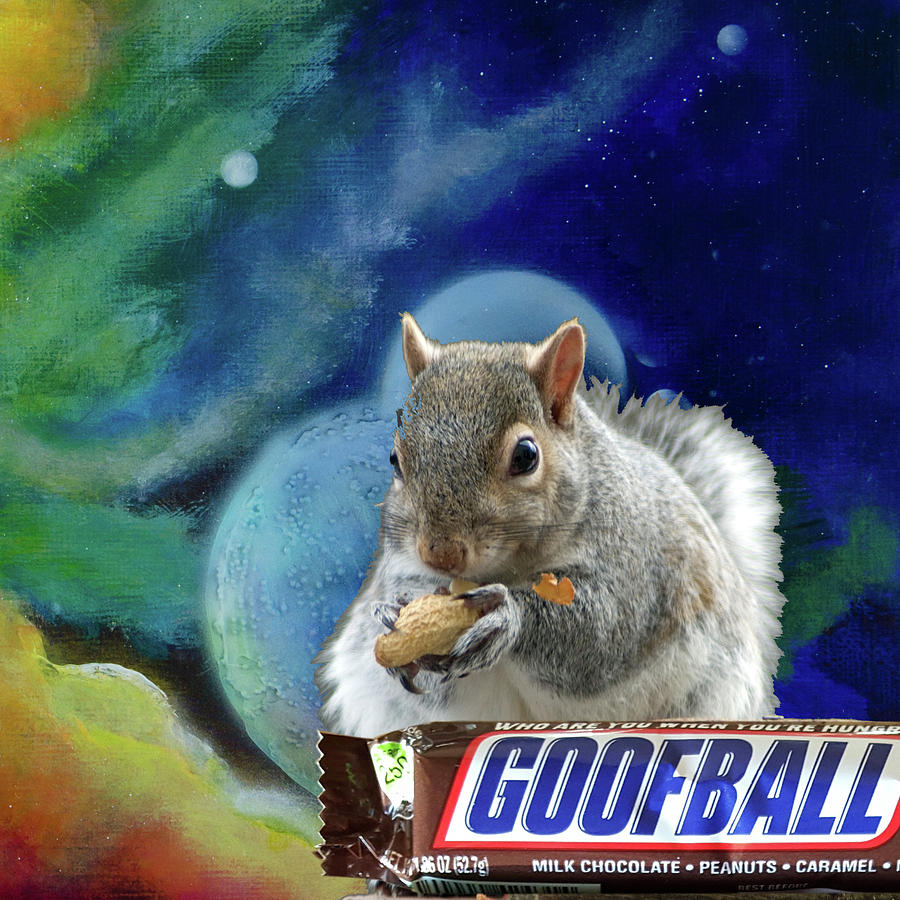 Squirrels In Space Mixed Media