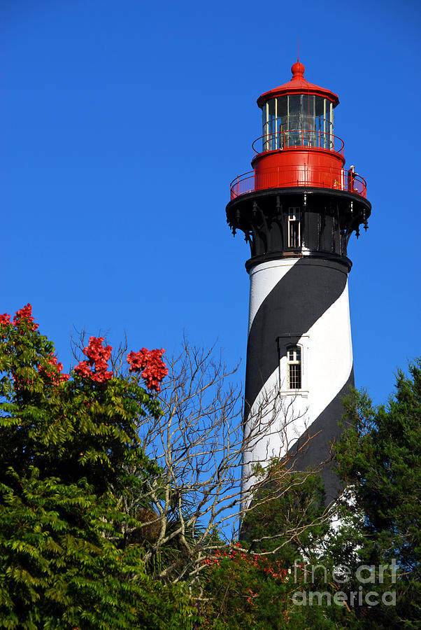 Lighthouse Photograph - St. Augustine Lighthouse by Georgia Nick