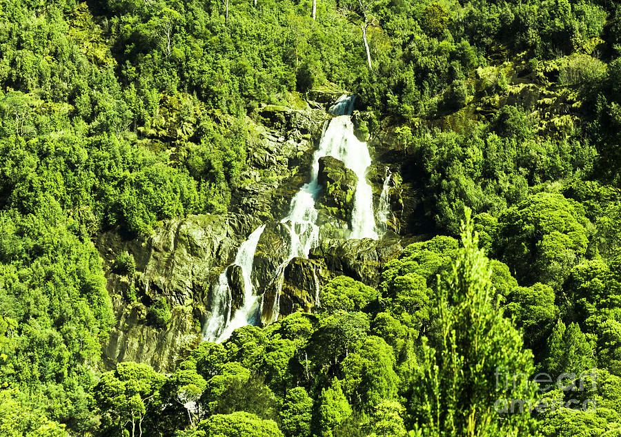 Waterfall Photograph - St Columba Falls Tasmania by Jorgo Photography - Wall Art Gallery