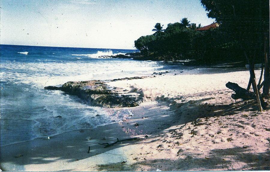 Ocean Photograph - St. Croix Vista by Anne-Elizabeth Whiteway