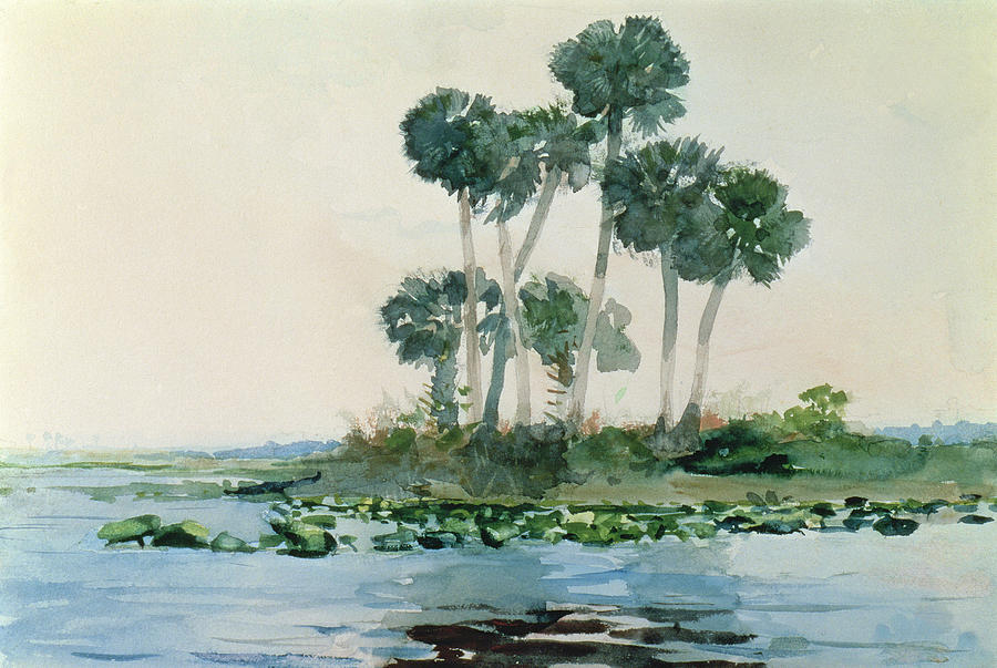 St Johns River Painting - St Johns River Florida by Winslow Homer