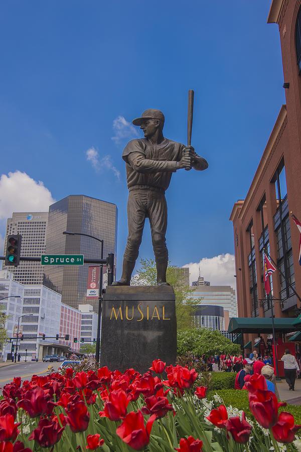 Cardinals Photograph - St. Louis Cardinals Busch Stadium Stan Musial Roses by David Haskett