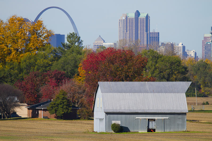 Arch Painting - St Louis Skyline From Illinois by Garry McMichael