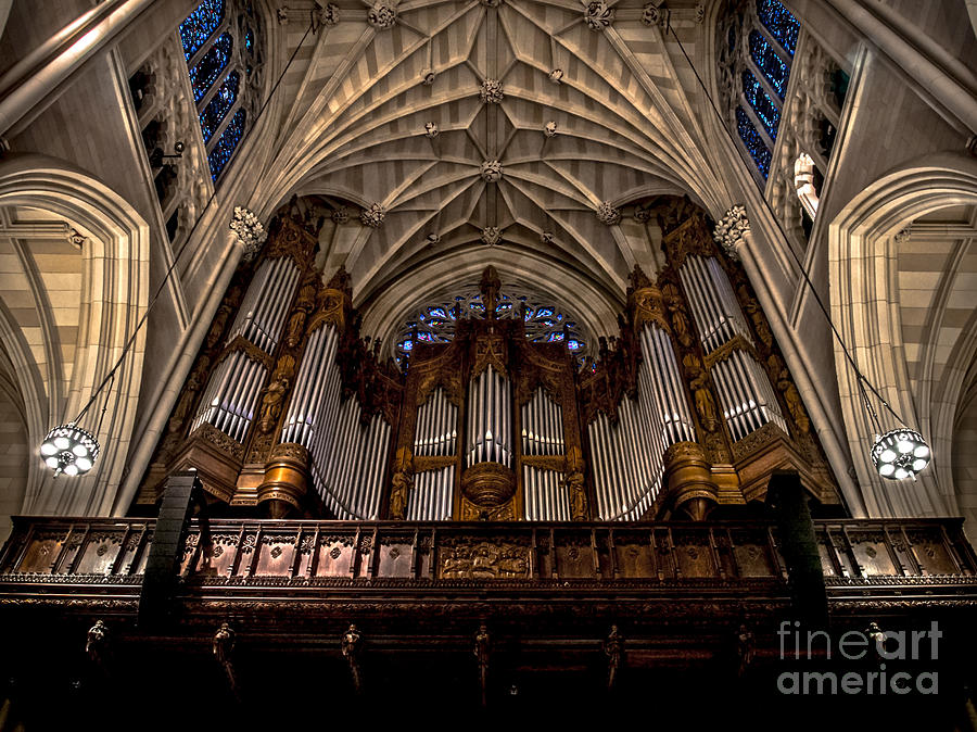 St Patrick S Cathedral Pipe Organ Photograph By James Aiken