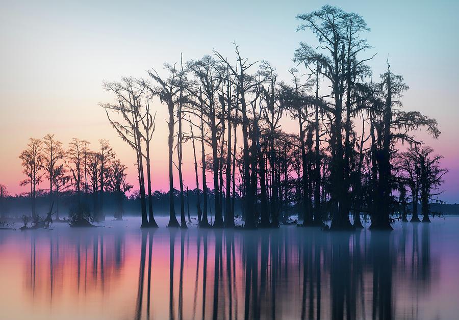 St. Patrick's Day Sunrise by Cindy Lark Hartman