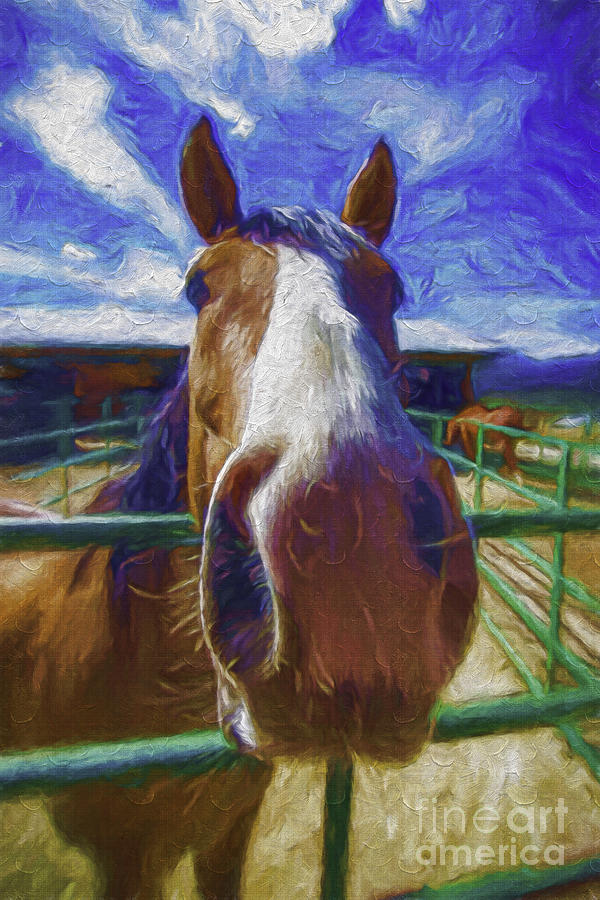 Horse Photograph - Stable Blues  by Bitter Buffalo Photography