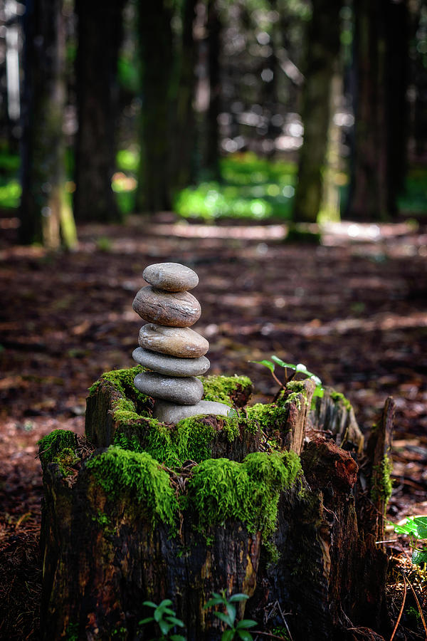 Mossy Forest Photograph - Stacked Stones And Fairy Tales IIi by Marco Oliveira