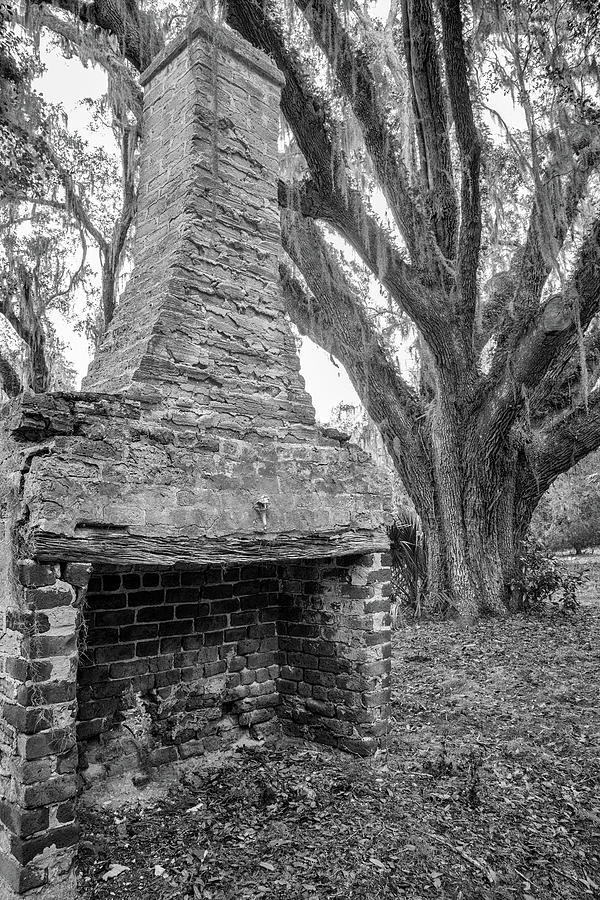 Stafford Plantation Chimney, Cumberland Island, Georgia by Dawna Moore Photography