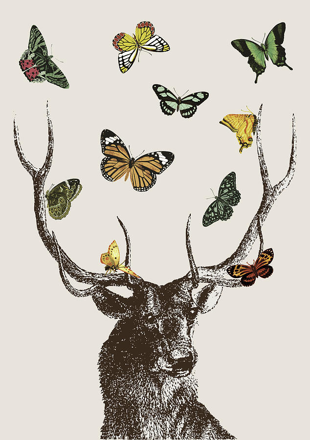 Stags Head Digital Art - Stag And Butterflies by Eclectic at HeART