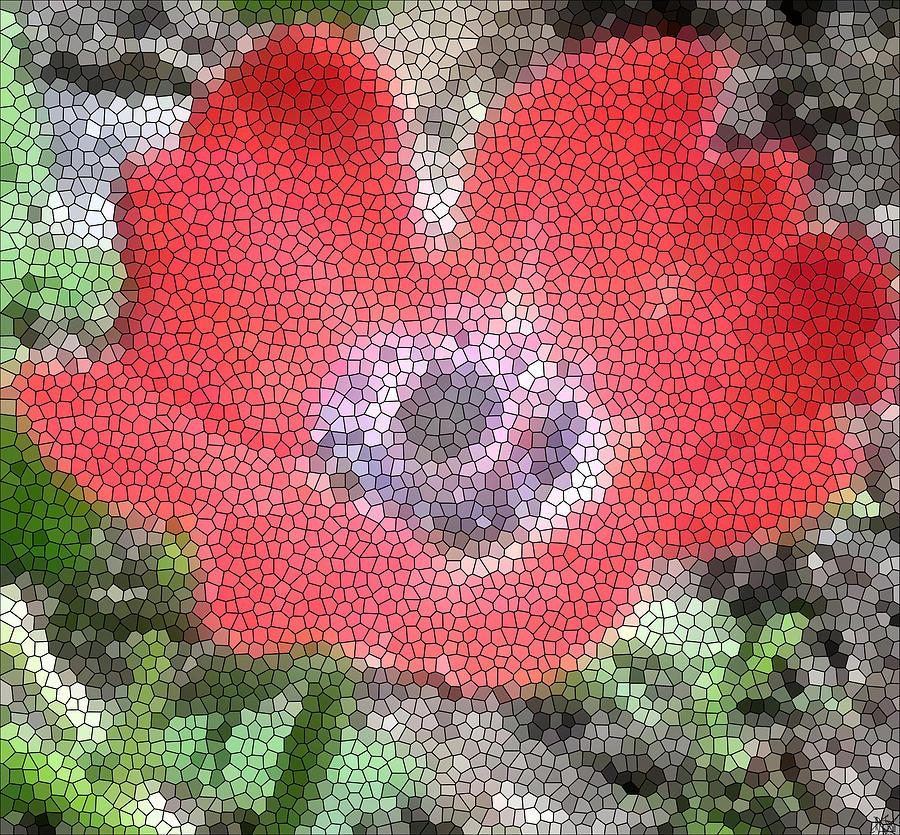 Bright Color Flower Photograph - Stain Glass Anemone by Debra     Vatalaro