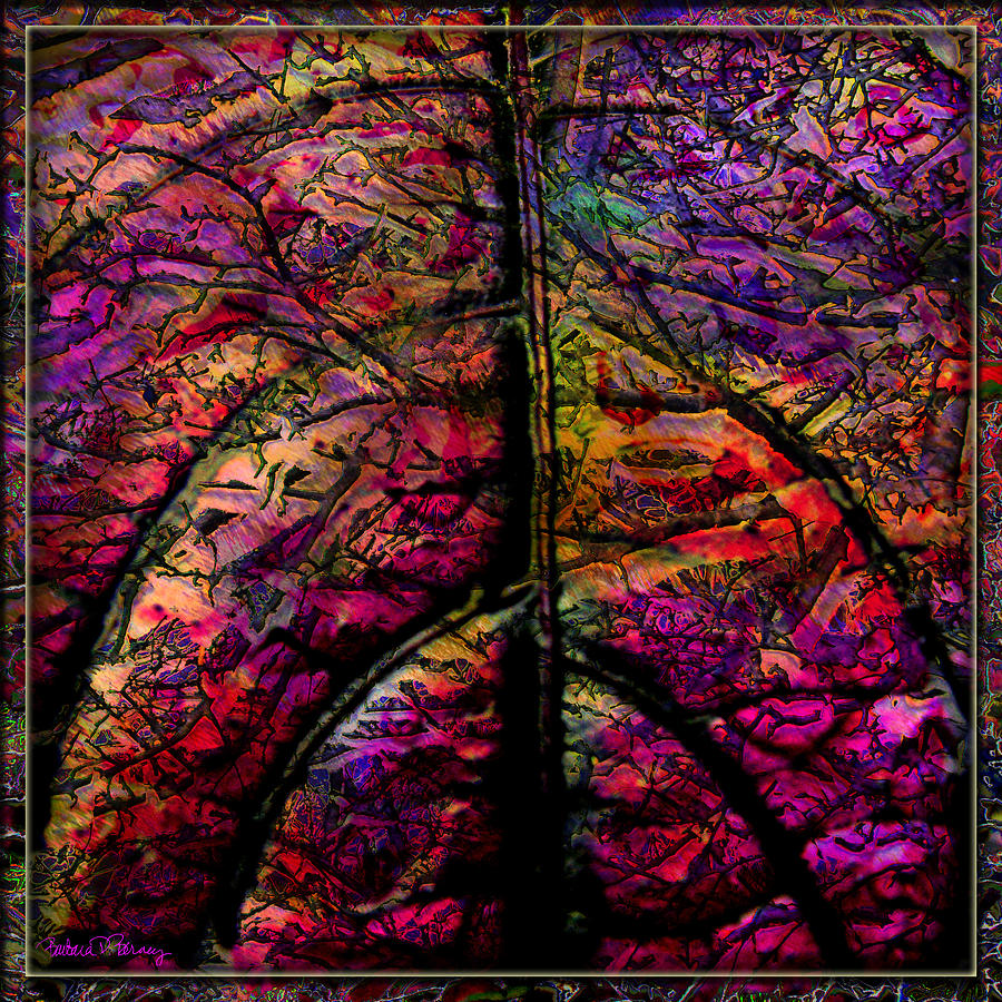 Stained Glass Digital Art - Stained Glass Not by Barbara Berney