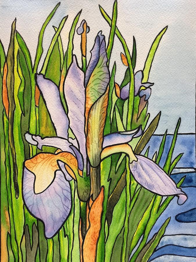 Stained Iris by Sonja Jones