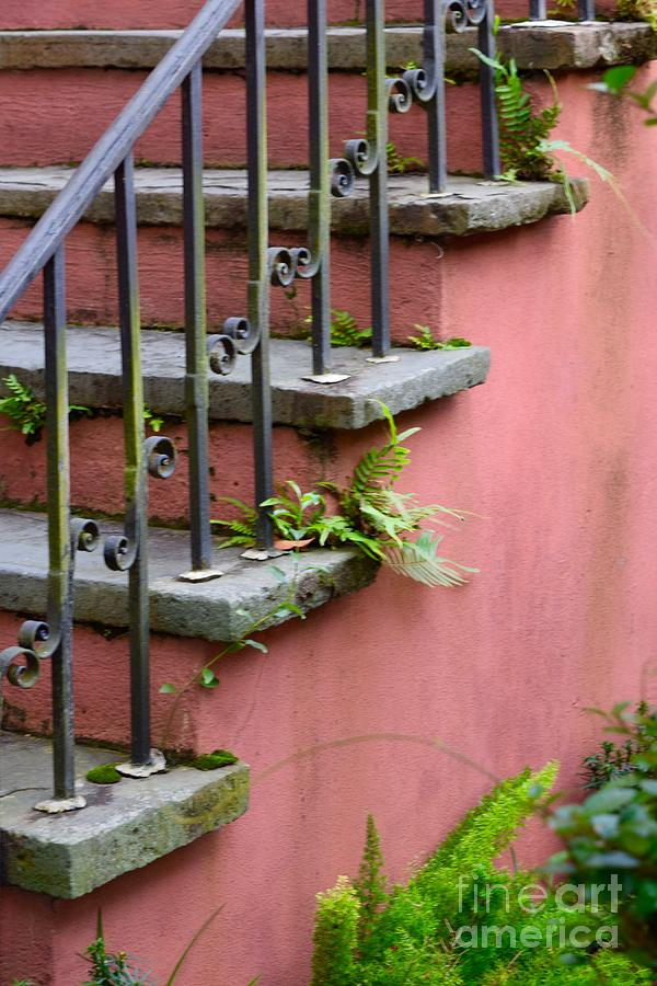 Stairs Photograph - Stairs by Dennis Knasel