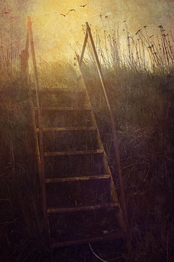 Stairway Photograph - Stairway To Heaven by Angela King-Jones