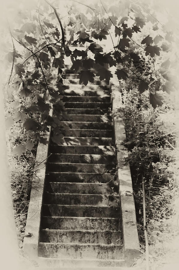 Philadelphia Photograph - Stairway To Heaven by Bill Cannon