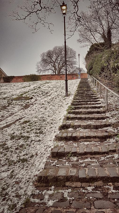 Winter Snow Photograph - Stairway To Spring by Zahra Majid