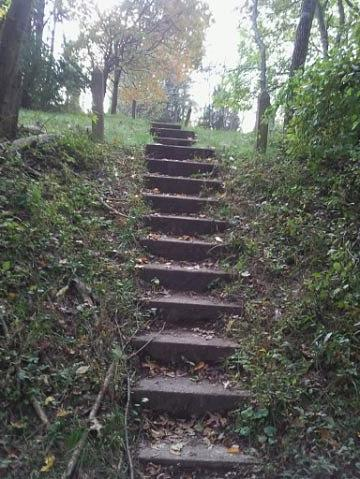Stairway To The Graveyard Photograph by Nichole Fowler