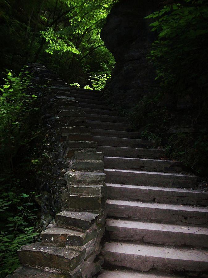 Watkins Glen Photograph - Stairway Watkins Glen 1  by InTheSane DotCom