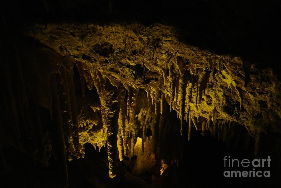Cave Photograph - Stalactites by Oscar Moreno