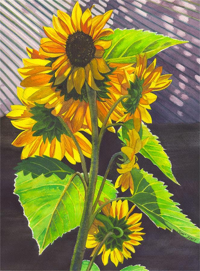 Sunflowers Painting - Stalk of Sunflowers by Catherine G McElroy