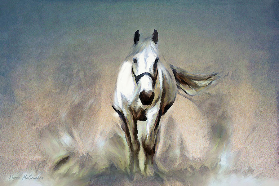 Stallion by Pennie McCracken