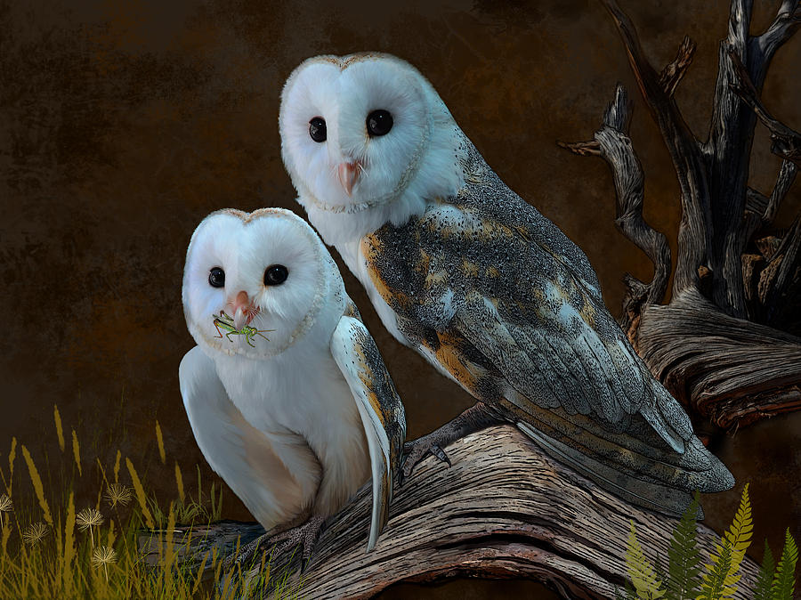 Owl Digital Art - Stand By Me by Thanh Thuy Nguyen